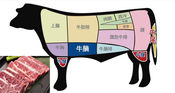 牛排的各个部位图解